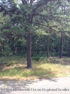 4 Turkey Swamp Road, Freehold, NJ 07728 (MLS #22112277) :: William Hagan Group