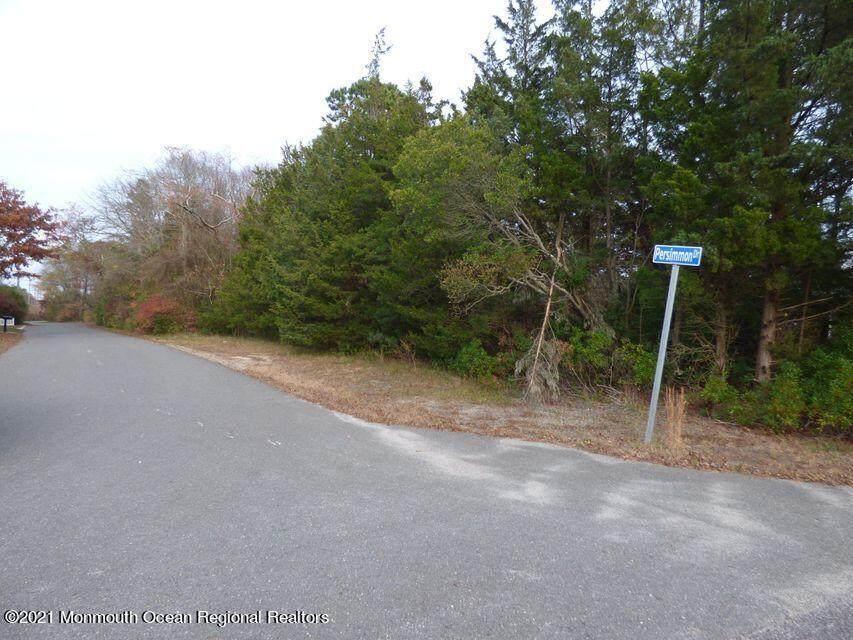 5 Persimmon Drive - Photo 1