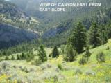Lot 357 Pole Gulch Road - Photo 1