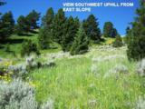 Lot 357 Pole Gulch Road - Photo 5
