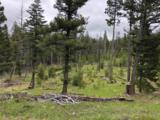 NHN Bison Hollow Road - Photo 11