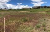 Lot 80 Valley Garden Golf Village - Photo 16