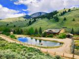 2644 Fork Little Sheep Creek - Photo 1