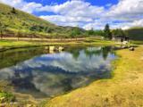 2644 Fork Little Sheep Creek - Photo 2