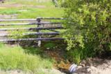 2644 Fork Little Sheep Creek - Photo 43