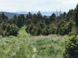 167 Elk Acres Trail - Photo 10