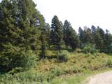 3 Rocky Mountain Meadows Road - Photo 5