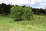 Lot 37 Talus Trail - Photo 11