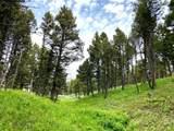 135 Panorama - Photo 11
