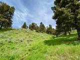 135 Panorama - Photo 12