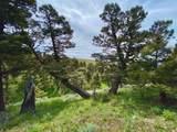 135 Panorama - Photo 14