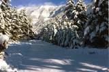 8384 Saddle Mountain Road - Photo 33