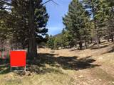 525 Nixon Peak Road - Photo 14