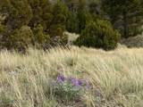 Lot 831 Crystal Mountain Rd - Photo 15