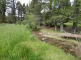 1270 Nevada Creek Ranch Drive - Photo 41