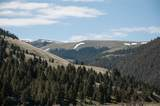 2627 Middle Fork Little Sheep Creek - Photo 12