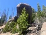 9733 Lake View Lode - Photo 3