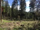 10260 Bear Run Creek Road - Photo 10