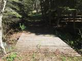 10260 Bear Run Creek Road - Photo 24