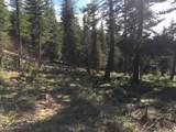 10260 Bear Run Creek Road - Photo 44