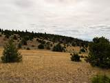 TBD Deerfoot Trail - Photo 18