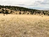TBD Deerfoot Trail - Photo 26