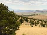 TBD Deerfoot Trail - Photo 4
