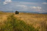 Lot 3 Chico Peak Estates - Photo 21