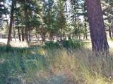211 Danaher Trail - Photo 4