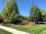 TBD Shade Tree - Photo 3