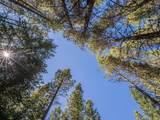 156 Pine Cone Terrace - Photo 17