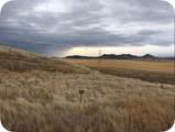 Lot 67 Rolling Prairie Way - Photo 1