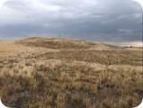 Lot 67 Rolling Prairie Way - Photo 3