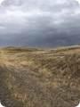 Lot 67 Rolling Prairie Way - Photo 4