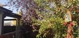 405 Green Tree - Photo 7