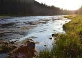 TBD Wise River - Hwy 43 (Beaverhead & Deer Lodge) - Photo 6