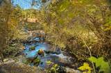 225 Muskrat Creek Road - Photo 3
