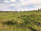 Tr 42-43 Wild Horse Meadow - Photo 15