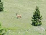 Tr 46-47 Wild Horse Meadow - Photo 18