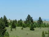 Tr 46-47 Wild Horse Meadow - Photo 2