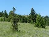 Tr 46-47 Wild Horse Meadow - Photo 20