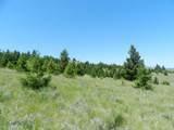 Tr 46-47 Wild Horse Meadow - Photo 21