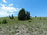Tr 46-47 Wild Horse Meadow - Photo 8