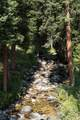 Tract 1L North Fork Road - Photo 5