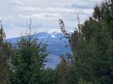 Lot 30 Tenderfoot Trail - Photo 18