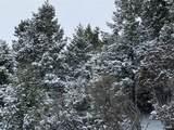 Lot 30 Tenderfoot Trail - Photo 3