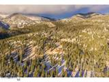 1253 Jack Creek Road - Photo 44