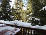 35 Blue Spruce - Photo 31