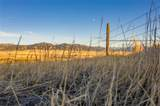TBD Dry Creek Road - Photo 31