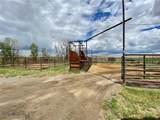 590 Millegan Canyon Road - Photo 33